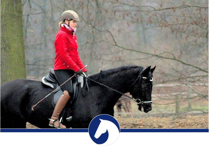 schwerpunkt-physio-riding